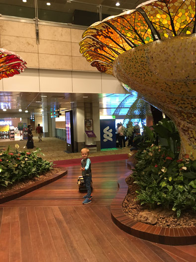Singapore Airport - an amazing location - with lots of things to discover