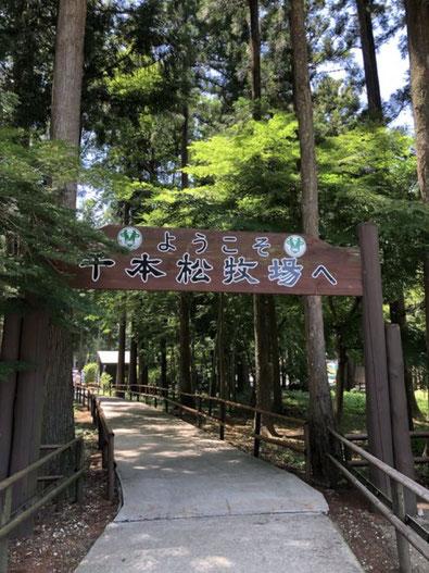 コラボ大宮・デートスポット栃木「千本松牧場」写真
