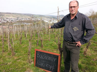"""Auf dem """"Bachemer Karlskopf"""" wächst vom Weingut Reinhold Riske der Spätburgunder und etwas Portugieser."""