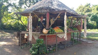 cuba : une petite cabane au toit de chaume avec un très bel étale de fruits et légumes