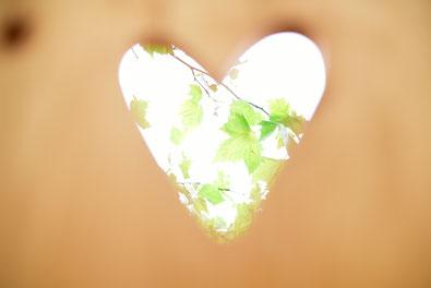 besser als toitoi, Miet WC, Kompotoi Komposttoilette, Greenport, kompostklo, ökoklo ,ökotoi, Trockentoilette ,humustoilette, Trenntoilette, ecotoilette, festivaltoilette, eventtoilette, miettoilette, humusklo, trockenklo, mobile Toilette