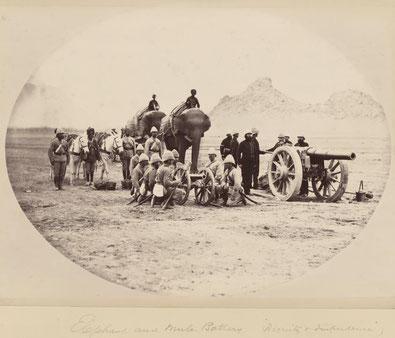 توپهای ثقیل با فیل و توپهای خفیف با قاطر منتقل میشد