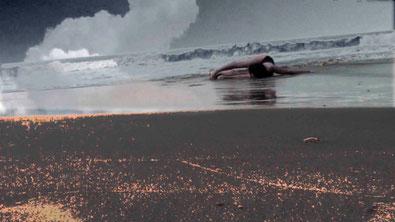 Continuum 2010, extrait de vidéo.