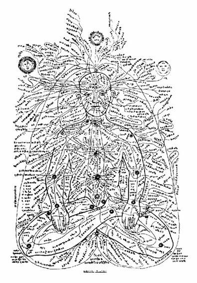 Les nadis, canaux énergétiques du corps subtil dans lesquels circule le prāṇa, ou énergie vitale.