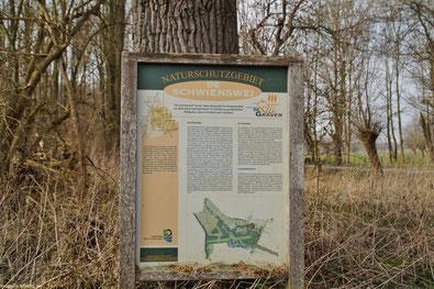 Das Naturschutzgebiet De Schwienswei