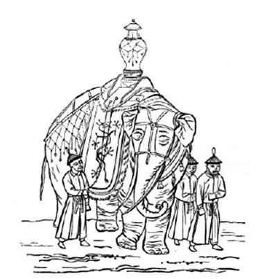 Eléphant de l'empereur