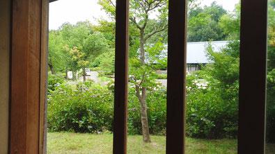 歌仙の座敷から樹々のすき間を通して見える『小町の舎』