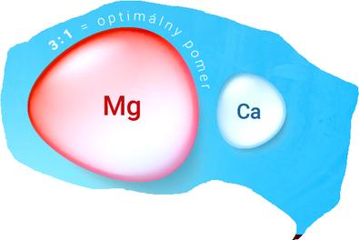 Grafik Verhältnis Magnesium zu Calcium.png