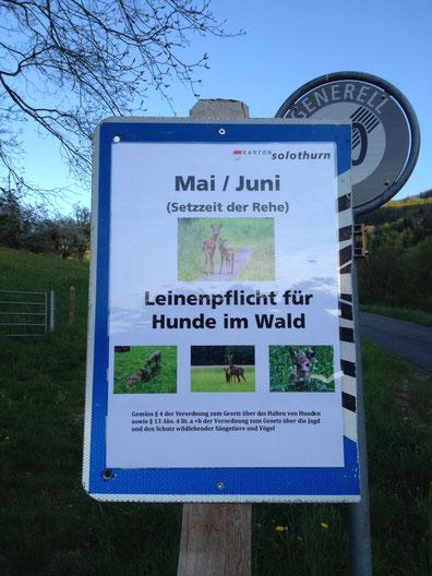 Offizielles Hinweisschild für die Leinenpflicht im Kanton Solothurn