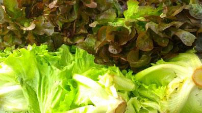 Salate,Saladas,salads,Gemüse,Legumes,Vegetables,Martins-Kulinarium,Carvoeiro,Algarve,Portugal