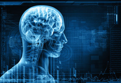 NLP Neurolinguistisches Programmieren / Neurolinguistische Programmierung und PLP Psycholinguistisches Programmieren / Psycholinguistische Programmierung: Programme für Sie, ihre Ziele und Ihren Erfolg!
