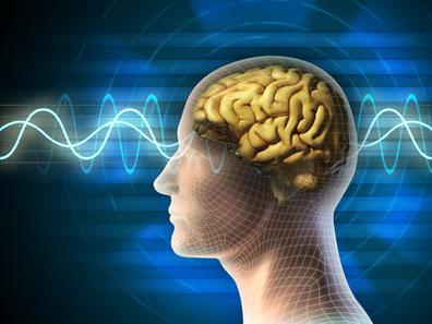 Kommunikative Gedankenlenkung über hypnotische Sprachmuster lernen:  Seminar, Workshop, Inhouse Schulung, Lehrgang, Rhetorik-Training, Fortbildung, Schulung