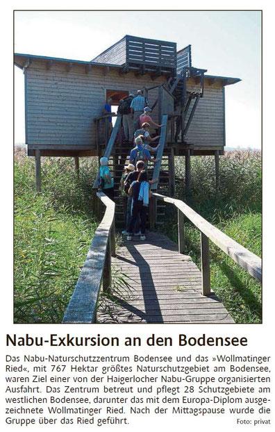 Schwarzwälder Bote, 19.09.2019