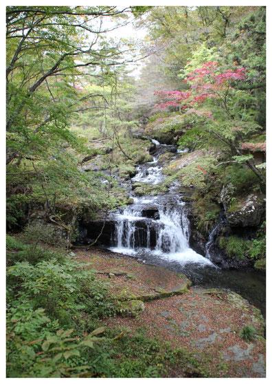 滝から流れ落ちる水の音がすがすがしく清涼感たっぷりです。