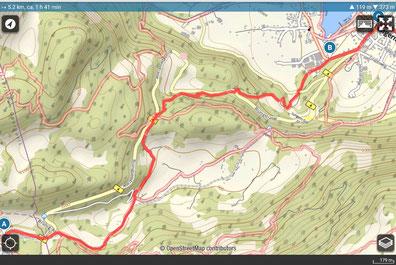 Wanderplan Brünigpass - Lungern