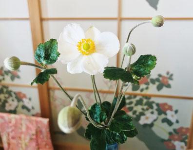 癒しの和エステ「心美」のおもてなし、秋の花「シュウメイギク」