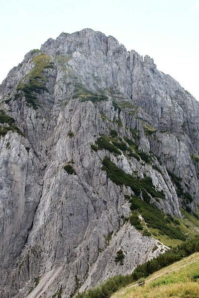 Der Nordwestgrat, im unteren Teil sieht man in den Latschen den Steig