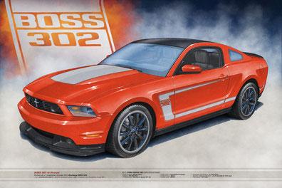 2012 BOSS 302 •• Price starts at US$55