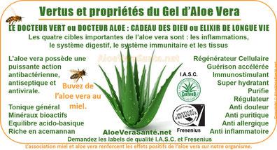 AloeVeraSante | LR le gel d'Aloe Vera en usage interne : anti-inflammatoire, antiseptique, hémostatique, antalgique, apaisant, immunisant, antibiotique, antiallergique etc & miel
