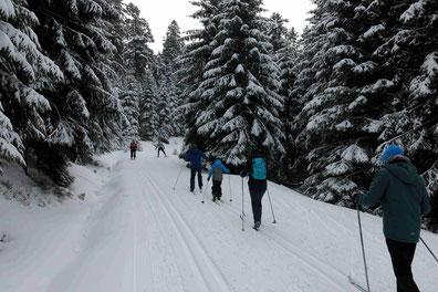 Sonnenberg im Harz: Langlauf für Familien