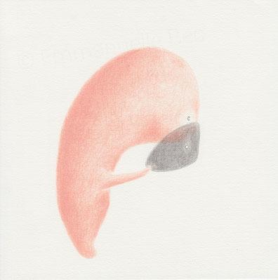 Persona • dessin graphite & crayon de couleur sur papier • 21x21 cm © Emmanuelle Bec 2016 / Persona • graphite & colored pencil drawing on paper • 8 1/4 x 8 1/4 in © Emmanuelle Bec 2016