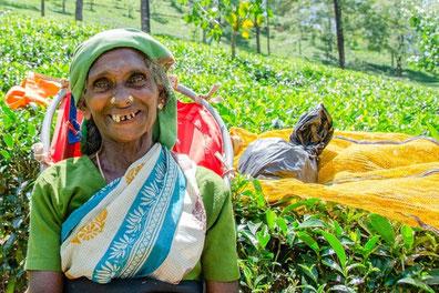 6 Tage Rundreise Sri Lanka