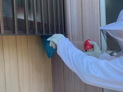 網で捕獲して蜂に駆除スプレーをかけて一網打尽にしている職人の写真
