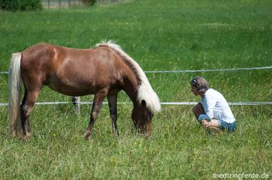Pferdegestütztes Coaching, Persönlichkeitsentwicklung mit Pferd, besseres Leben, Coaching