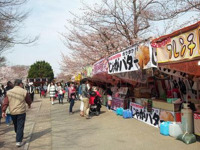 奈良県高田市桜祭り