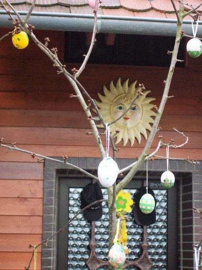 Die Sonne begrüßt den Tag in der Schwanenwiese