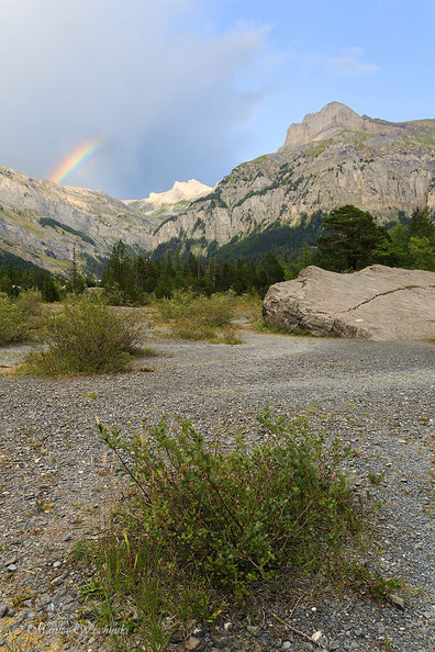 Versteckter Regenbogen