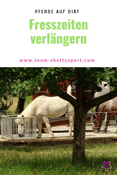 Pferde auf Diät: wie Heunetze und Heuraufen die Fresszeitenverlängern