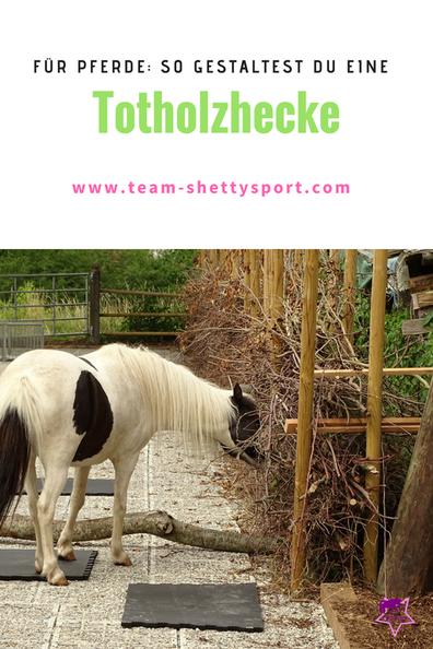 Eine Totholzhecke im Pferdestall ist sinnvoll: sie bietet den Pferden nicht nur abwechslungsreichen Knabberspaß, sondern ist auch Lebensraum für allerlei Getier.