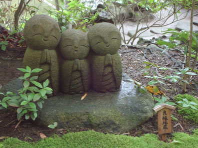 Photo: Hasedera-Temple