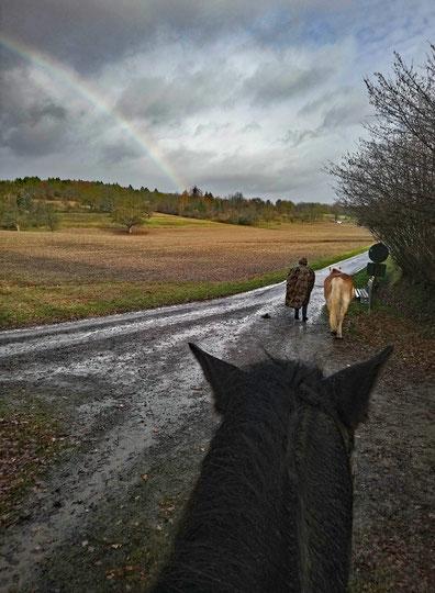 Ausflug bei schlechtem Wetter mit Regenbogen