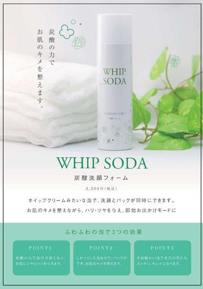中川商店 岐阜 オリジナル 炭酸洗顔フォーム WHIP SODA(ホイップソーダ)