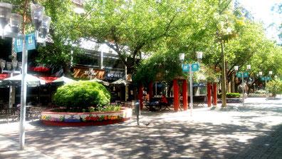 Ru piétonne de Mendoza en Argentine où l'on voit des promeneurs, des bancs, des arbres et une petite fontaine