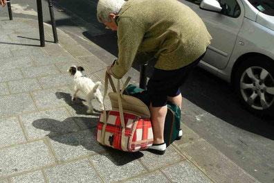 Stimmungsübertragung Hund, Verhalten Hund