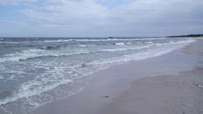 Strand von Prerow an der Ostsee