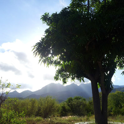 Beautiful nature around Bio Sana in Mexico
