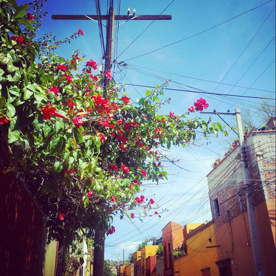 Beautiful impressions of San Miguel de Allende