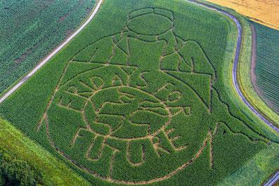 Fridays-for-Future-Logo von Landwirt Lünemann. (Quelle: Guido Kirchner/dpa)