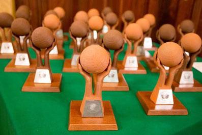 GreenBrands Award - 3D-Druck-Trophäe GreenBrands Award aus ARBOBLEND