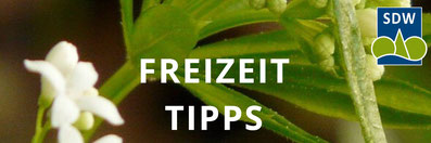 SDW-Freizeit-Tipps