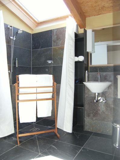 barrierefree showerroom with brasilian slates