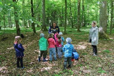 Die Försterin des Kreisforstamtes bei einem Termin im Wald mit den Teilnehmern