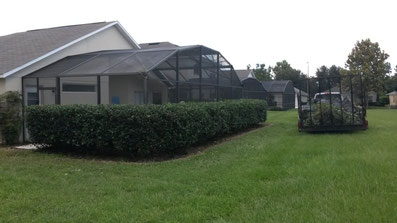 kissimmee lawn care
