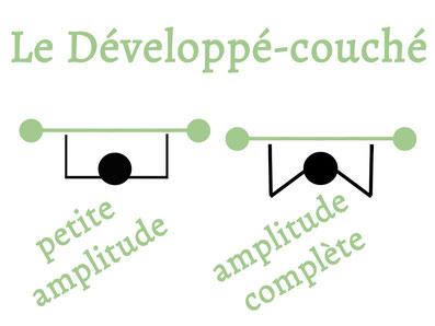 comparaison des amplitudes lors d'un développé-couché.