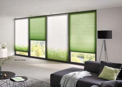 Wabenplissee mit Farbverlauf, Wabenplissee grün, Plissees in Freigericht und Umgebung