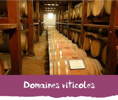Domaines viticoles Tourisme Nord Béarn Madiran